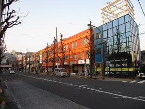 平成31年3月26日 夜のとちの木通りです