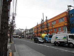平成31年3月29日 朝のとちの木通りです