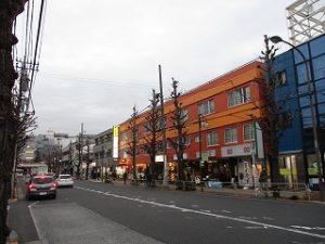平成31年3月29日夜のとちの木通りです