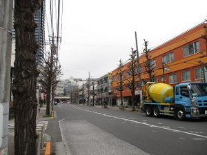 平成31年3月30日 朝のとちの木通りです