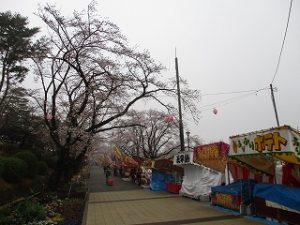 富士森公園バス停付近から公園中央へ
