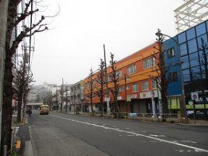 平成31年3月31日 朝のとちの木通りです