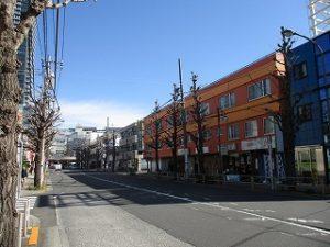 平成31年4月1日 朝のとちの木通りです