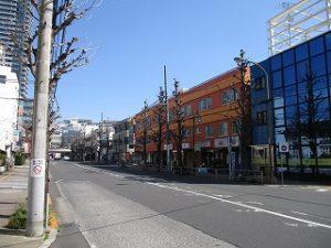 平成31年4月3日 朝のとちの木通りです