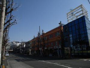 平成31年4月5日 朝のとちの木通りです
