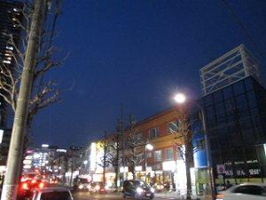 平成31年4月6日 夜のとちの木通りです