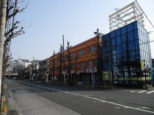 平成31年4月7日 朝のとちの木通りです
