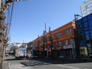 平成31年4月9日 朝のとちの木通りです