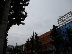 令和元年5月14日 夜のとちの木通りです