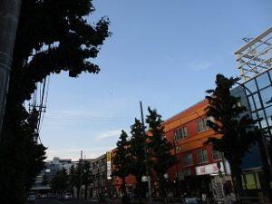 令和元年5月19日 夜のとちの木通りです
