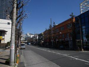 平成31年4月4日 朝のとちの木通りです