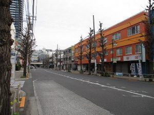 平成31年4月14日 今朝のとちの木通りです