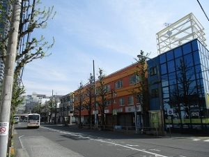 平成31年4月21日 朝のとちの木通りです