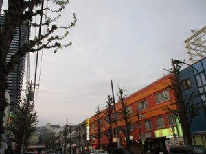 平成31年4月21日 夜のとちの木通りです