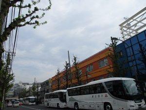 平成31年4月22日 今朝のとちの木通りです