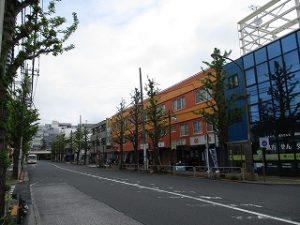 平成31年4月25日 朝のとちの木通りです