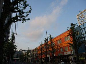 平成31年4月25日 夕方のとちの木通りです