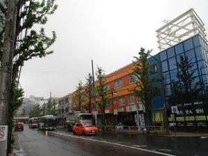平成31年4月26日 朝のとちの木通りです