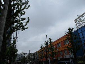 平成31年4月27日 朝のとちの木通りです