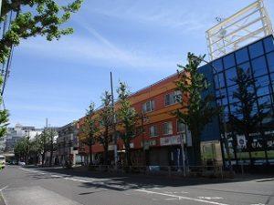 平成31年4月28日 朝のとちの木通りです