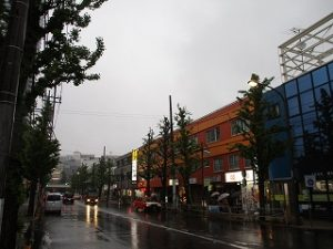 平成31年4月30日 夜のとちの木通りです