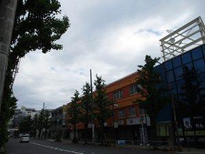 令和1年5月6日 朝のとちの木通りです