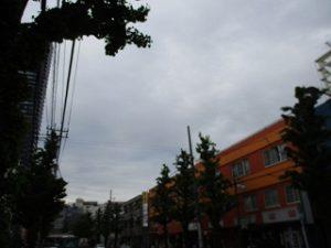 令和元年5月9日 夕方のとちの木通りです
