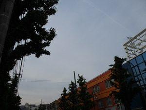 令和元年5月10日 夕方のとちの木通りです