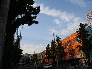 令和元年5月11日 夕方のとちの木通りです