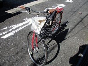 炎天下の中、自転車で~