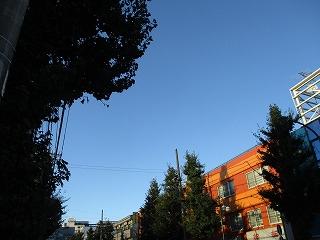 令和元年9月16日 夕方のRoom's Bar上空です