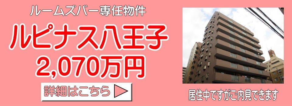ルピナス八王子 2SLDK 2070万円