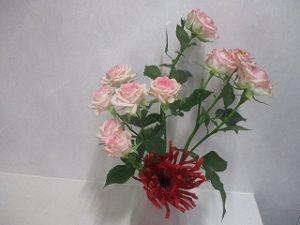 けいの家さんからいただいた花を活けてみました