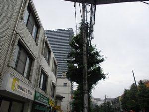 今朝の八王子駅南口周辺のイマソラです
