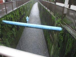 弊社南側の山田川も流れが早くなってますね