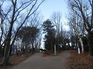 2020年12月24日 朝の富士森公園の遊歩道です