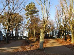 2020年12月26日 朝の富士森公園の遊歩道です