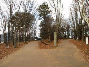 2020年12月27日 朝の富士森公園の遊歩道です