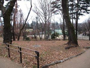 2020年12月28日 朝の富士森公園の風景です