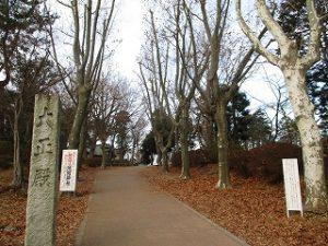 2021年1月4日 朝の富士森公園の風景です