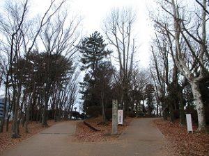 2021年1月5日 朝の富士森公園の風景です