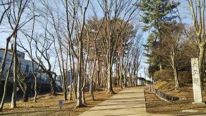 2021年2月23日 朝の公園の風景です