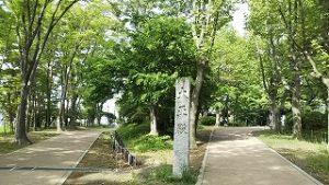 2021年5月10日 朝の富士森公園の遊歩道です