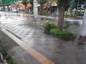 今もゲリラ豪雨が降ってます